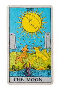 The Moon Tarot Card.